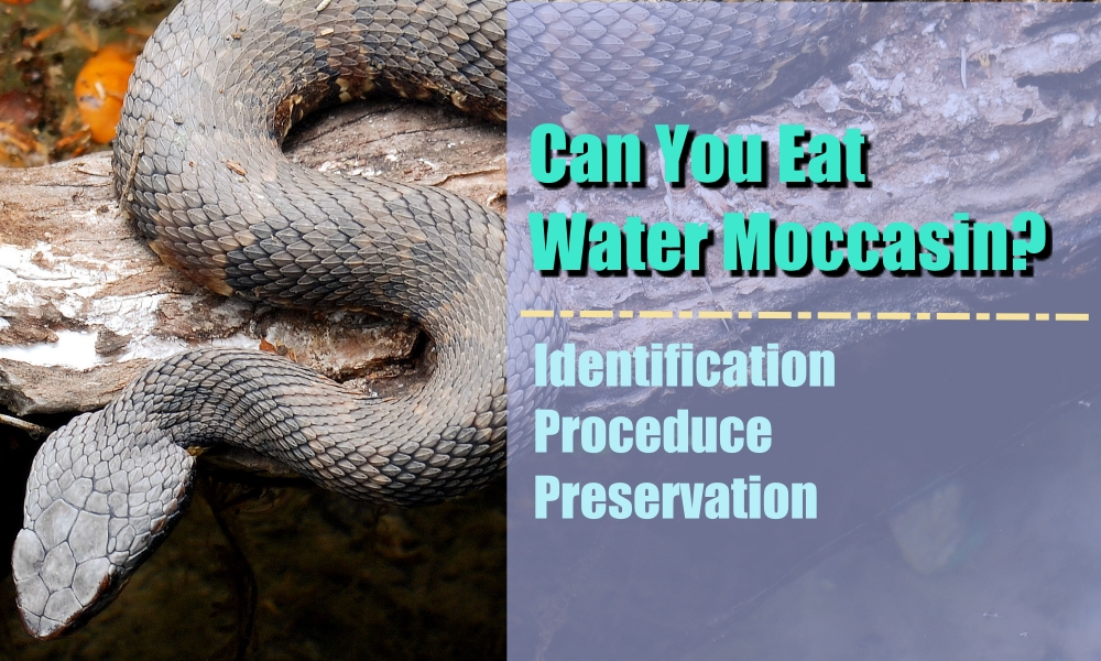 can you eat water moccasin
